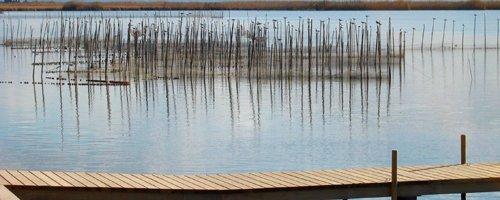Mirador del Lago de la Albufera de Valencia
