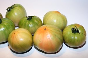 tomate marmade cuarenteno